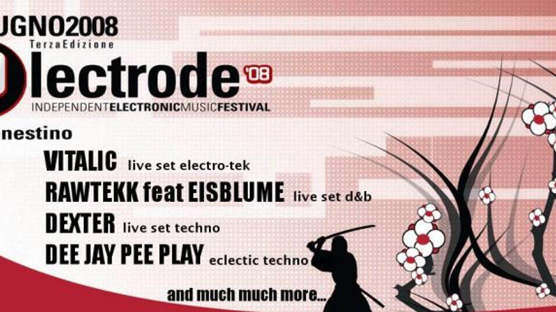 LPM 2008 Rome   Electrode