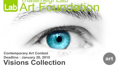 Visions Collection contest