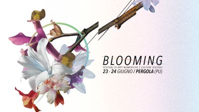 Blooming Festival 2017