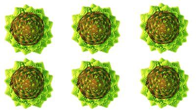 cavoli-e-broccoli