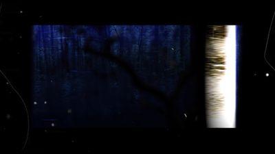 FOREST-still-02