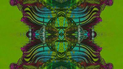 QPOP   Inner Nation Cyberdelic AV 2