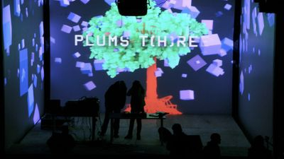 festival of audio-visual experiments PLUMS fest