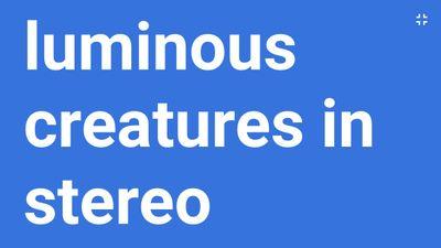 Luminous Creatures in Stereo
