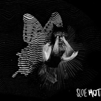 Sloe Motion