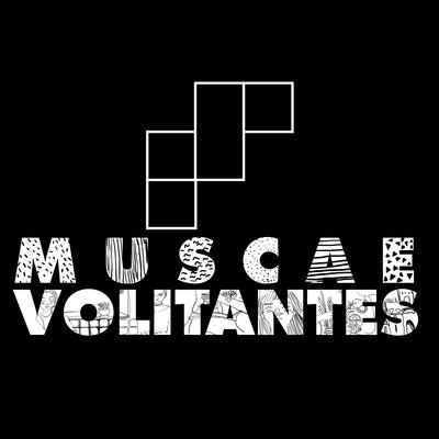 Muscae Volitantes