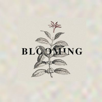 Blooming Festival