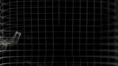 Overspoeld // Studio de Maan + Mark Nieuwenhuis [NL]